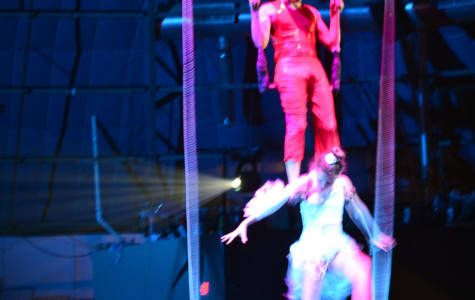 Flaherty flies high at the circus