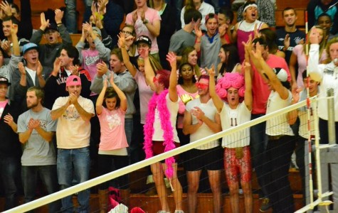 Game goes pink for cancer awareness