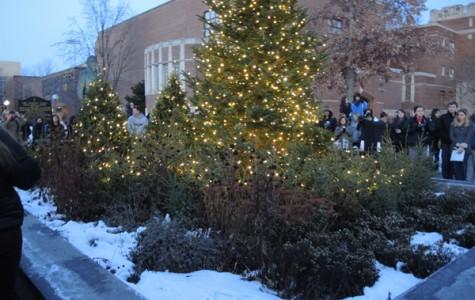 Tree Lighting Ceremony 2014