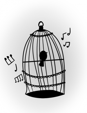 """""""The caged bird sings    with a fearful trill    of things unknown    but longed for still    and his tune is heard    on the distant hill    for the caged bird    sings of freedom"""" -Maya Angelou"""