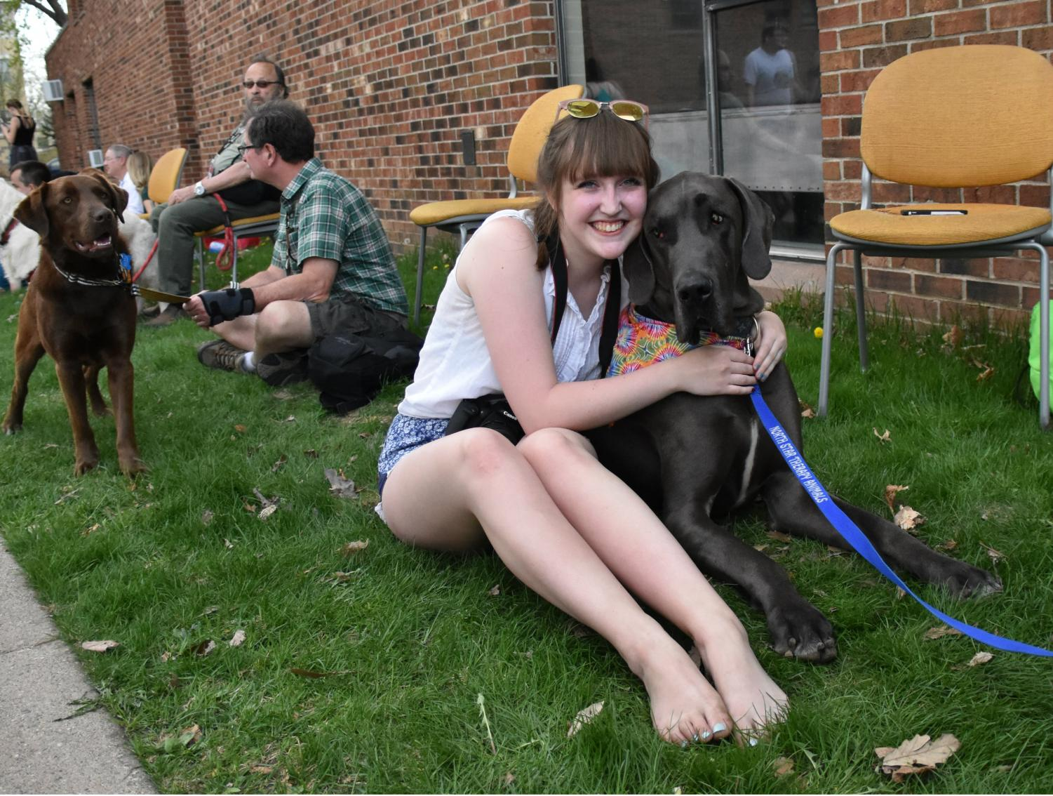 First-year Sophie Donahue poses with Phoenix, a Great Dane therapy dog traveling with his handler Alison from North Star Therapy Animals.