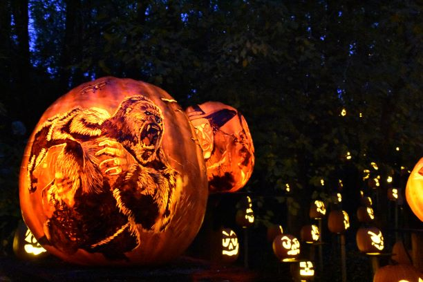 Intricate+lines+carved+into+a+hefty+pumpkin+capture+a+Kong+in+motion.