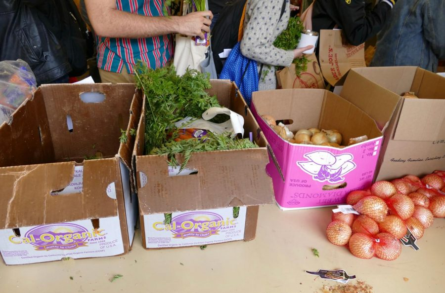 Students+choose+from+fresh+produce+and+groceries+at+a+pop-up+pantry+hosted+by+Feed+Your+Brain+on+Sept.+11.+The+pantries+are+open+to+anyone+in+the+Hamline+community+with+no+proof+of+income+needed.