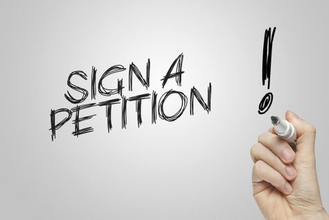 Petitions: Not so helpful after all?